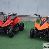 ATV Electric 350W
